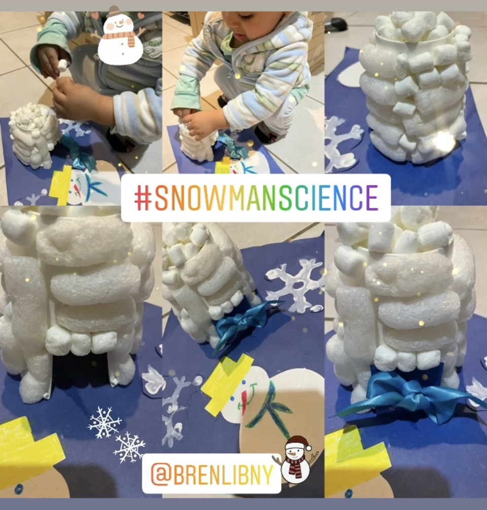 Snowman Science
